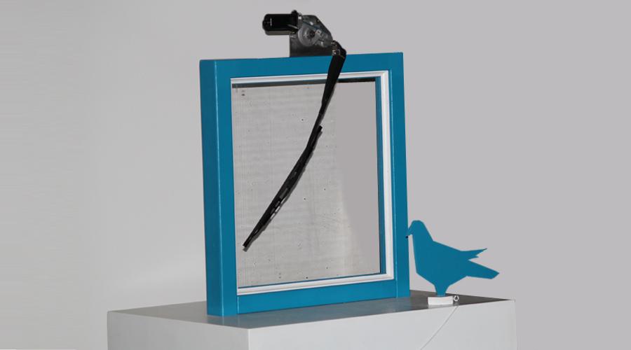 pigeonsweep
